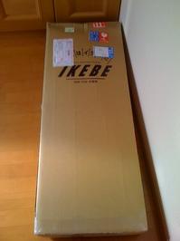 IKEBE楽器からギターが届いた