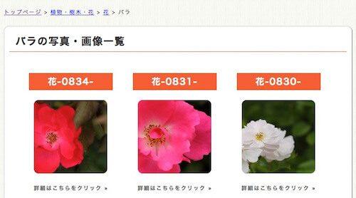 http://mousai.pics/の素材
